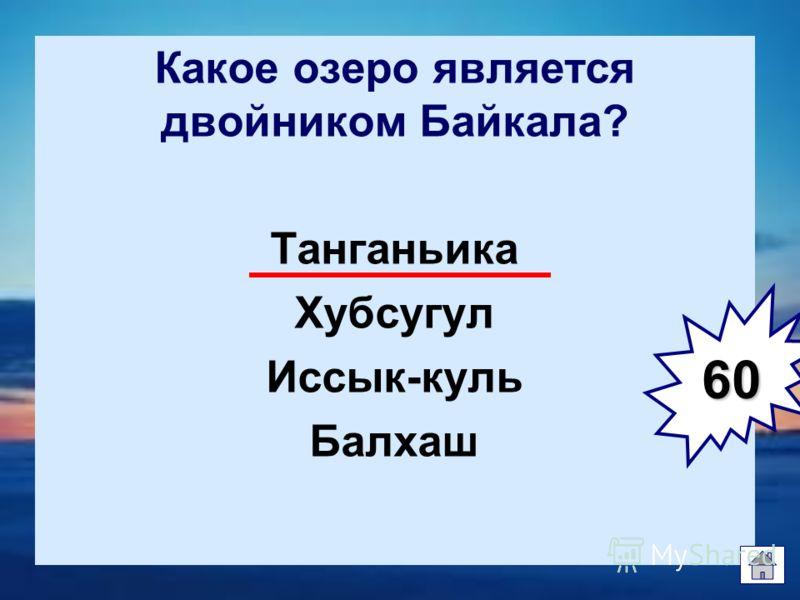 Какое озеро является двойником Байкала? Танганьика Хубсугул Иссык-куль Балхаш 60