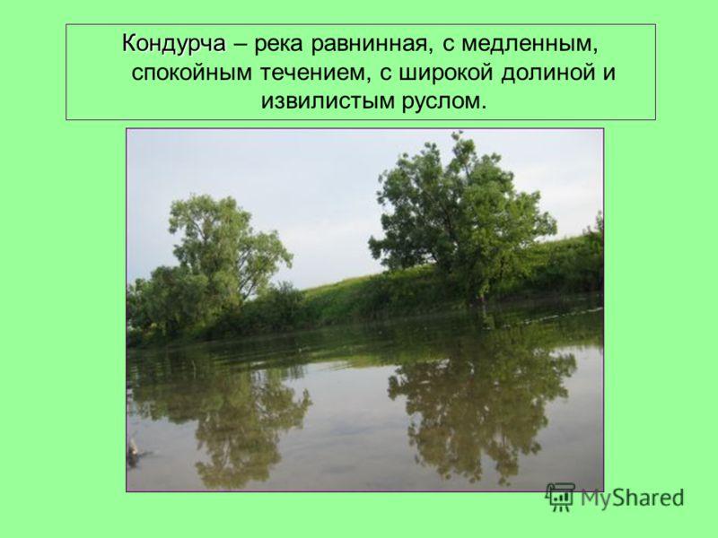 Кондурча Кондурча – река равнинная, с медленным, спокойным течением, с широкой долиной и извилистым руслом.