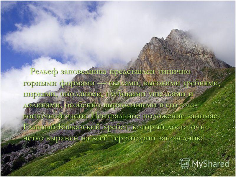 Рельеф заповедника представлен типично горными формами скалами, высокими гребнями, цирками, оползнями, глубокими ущельями и долинами, особенно выраженными в его юго- восточной части. Центральное положение занимает Главный Кавказский хребет, который д