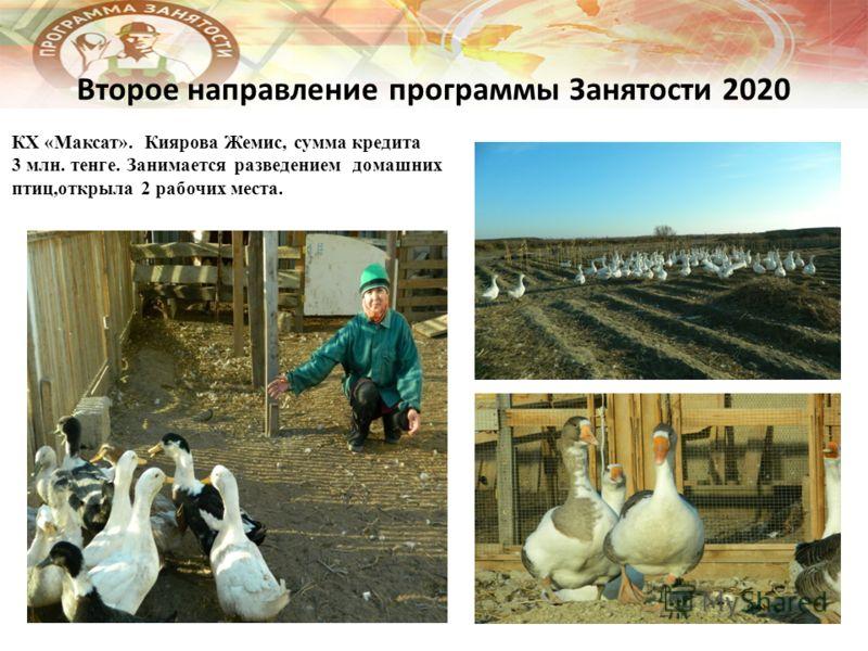 Второе направление программы Занятости 2020 КХ «Максат». Киярова Жемис, сумма кредита 3 млн. тенге. Занимается разведением домашних птиц,открыла 2 рабочих места.