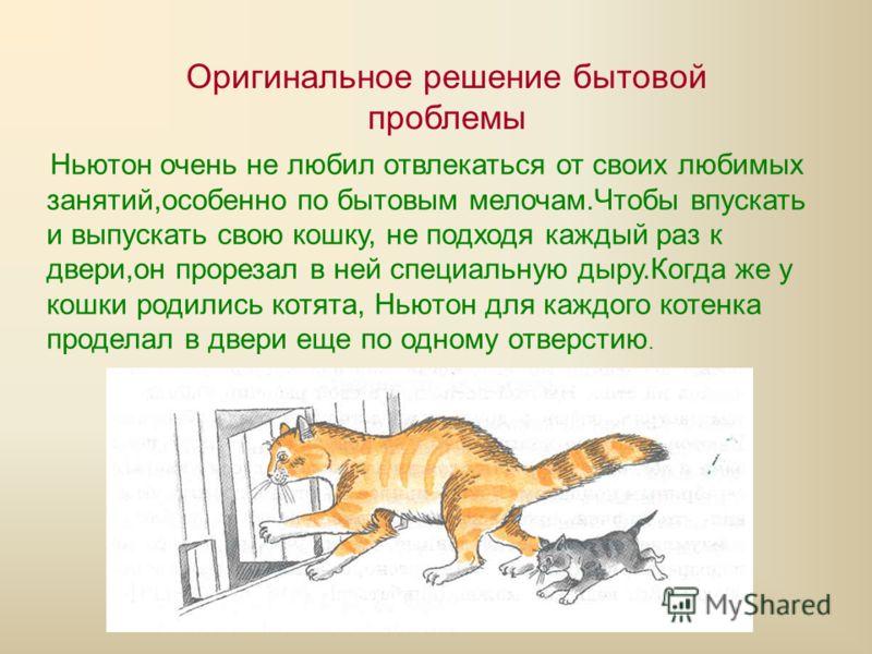 Оригинальное решение бытовой проблемы Ньютон очень не любил отвлекаться от своих любимых занятий,особенно по бытовым мелочам.Чтобы впускать и выпускать свою кошку, не подходя каждый раз к двери,он прорезал в ней специальную дыру.Когда же у кошки роди