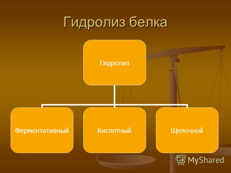 Гидролиз белка Гидролиз ФерментативныйКислотныйЩелочной