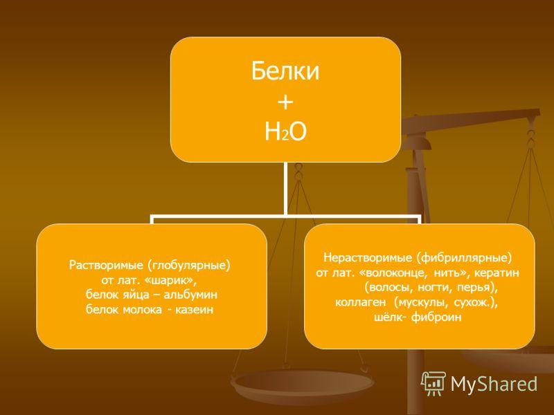 Белки + H2O Растворимые (глобулярные) от лат. «шарик», белок яйца – альбумин белок молока - казеин Нерастворимые (фибриллярные) от лат. «волоконце, нить», кератин (волосы, ногти, перья), коллаген (мускулы, сухож.), шёлк- фиброин
