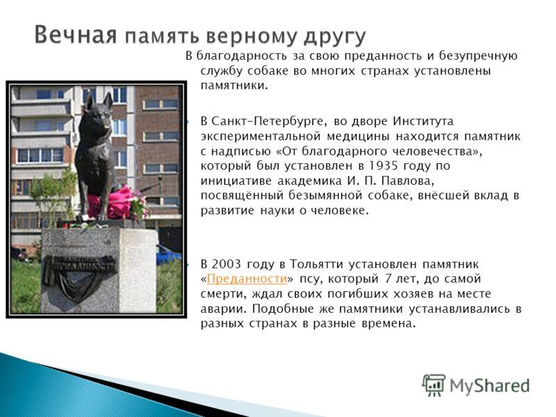 В благодарность за свою преданность и безупречную службу собаке во многих странах установлены памятники. В Санкт-Петербурге, во дворе Института экспериментальной медицины находится памятник с надписью «От благодарного человечества», который был устан