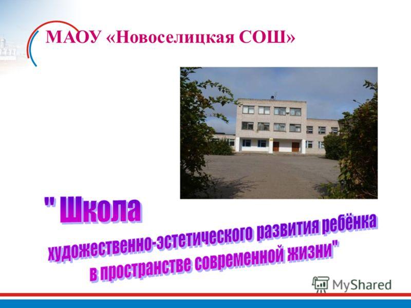 МАОУ «Новоселицкая СОШ»