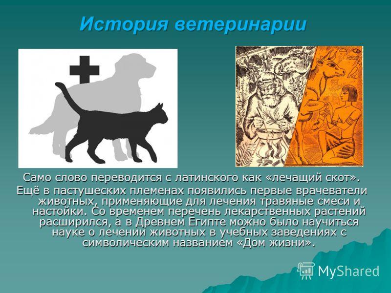 Само слово переводится с латинского как «лечащий скот». Ещё в пастушеских племенах появились первые врачеватели животных, применяющие для лечения травяные смеси и настойки. Со временем перечень лекарственных растений расширился, а в Древнем Египте мо