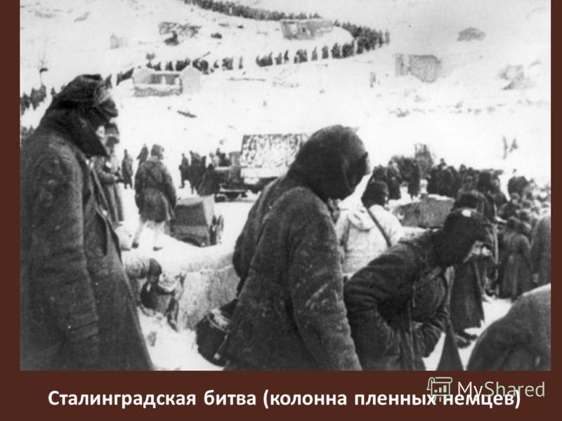 Сталинградская битва (колонна пленных немцев)