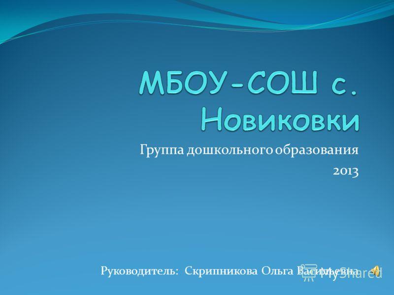 Группа дошкольного образования 2013 Руководитель: Скрипникова Ольга Васильевна