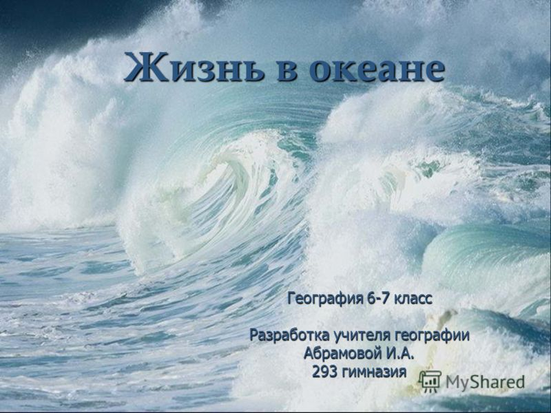 Реферат о жизни в океане 8384