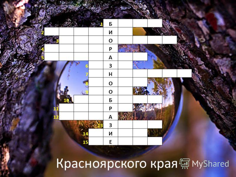 1 Б 2 И 3 О 4 Р 5 А 6 З 7 Н 8 О 9 О 10 Б 11 Р 12 А 13 З 14 И 15 Е Красноярского края