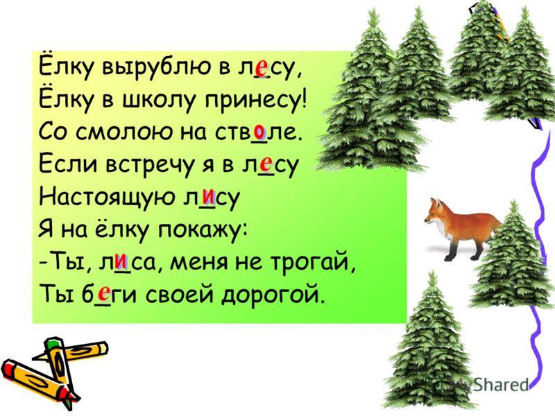 волк пень усы