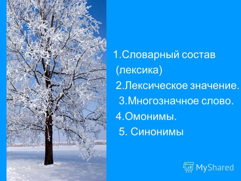 1.Словарный состав (лексика) 2.Лексическое значение. 3.Многозначное слово. 4.Омонимы. 5. Синонимы