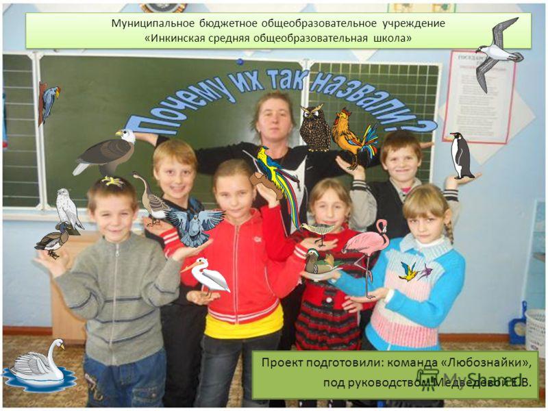 Проект подготовили: команда «Любознайки», под руководством Медведевой Е.В. Муниципальное бюджетное общеобразовательное учреждение «Инкинская средняя общеобразовательная школа» Муниципальное бюджетное общеобразовательное учреждение «Инкинская средняя