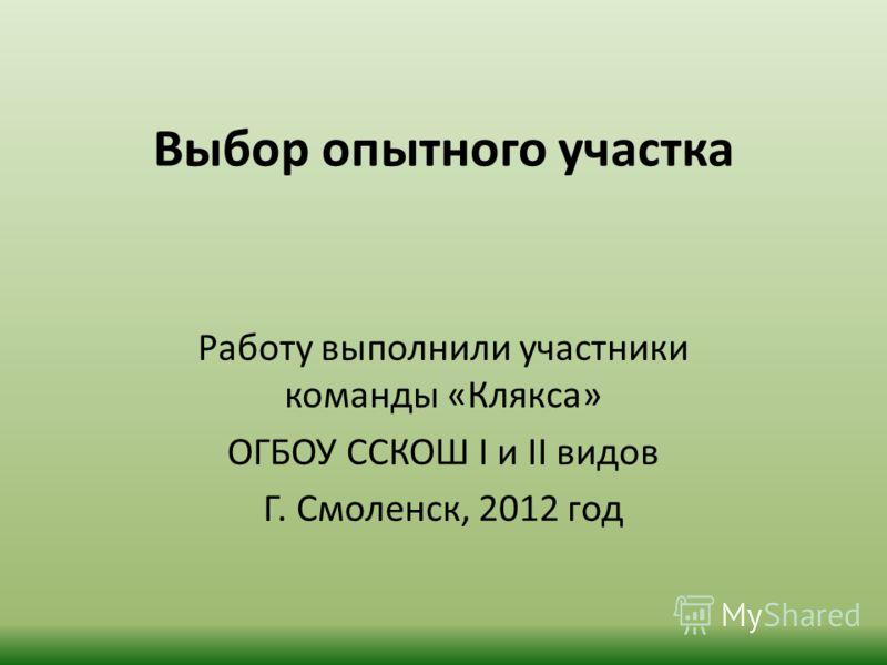 Выбор опытного участка Работу выполнили участники команды «Клякса» ОГБОУ ССКОШ I и II видов Г. Смоленск, 2012 год