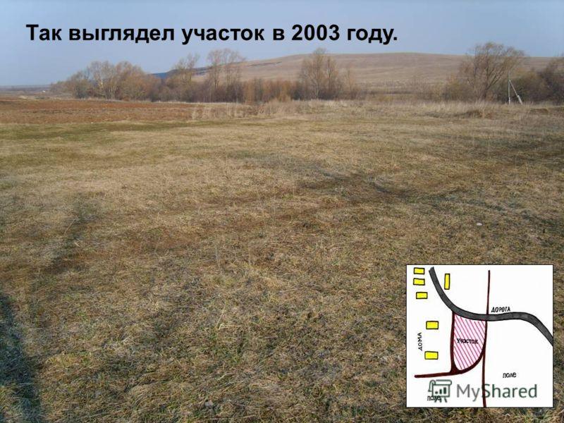 Так выглядел участок в 2003 году.