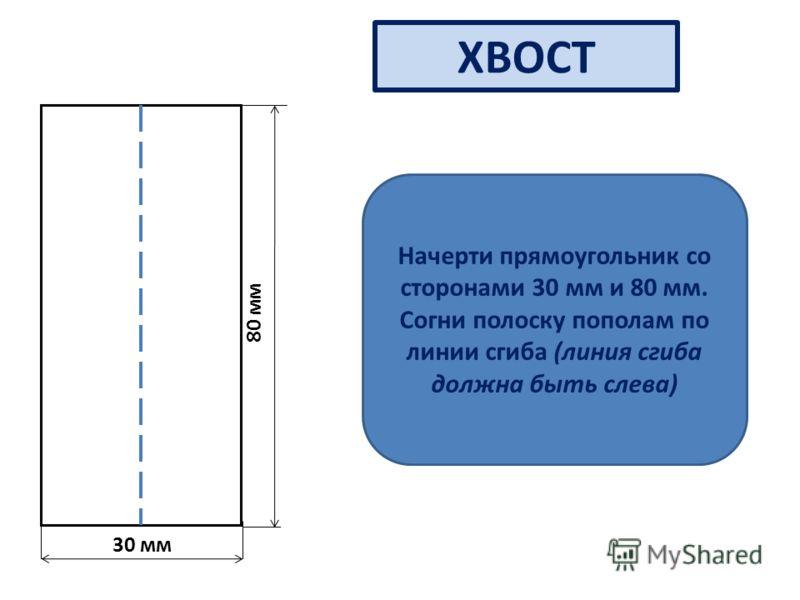30 мм 80 мм ХВОСТ Начерти прямоугольник со сторонами 30 мм и 80 мм. Согни полоску пополам по линии сгиба (линия сгиба должна быть слева)