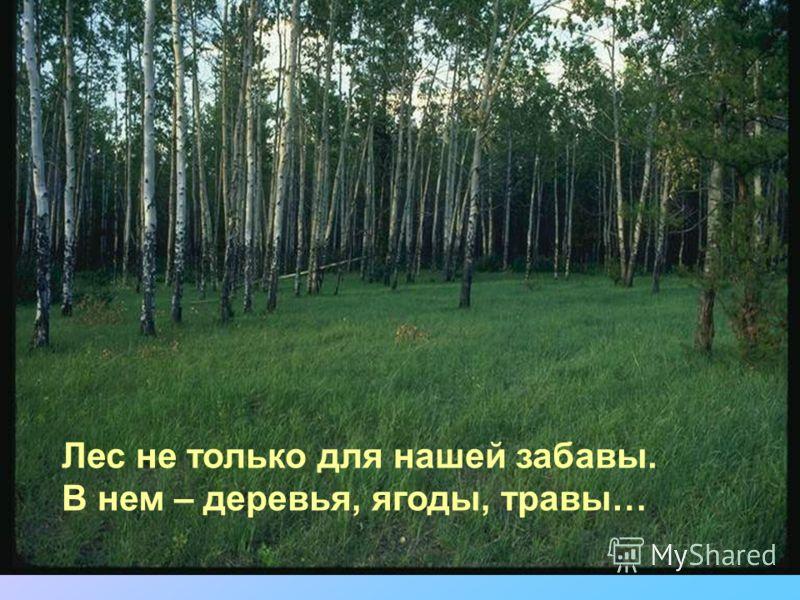 Лес не только для нашей забавы. В нем – деревья, ягоды, травы…