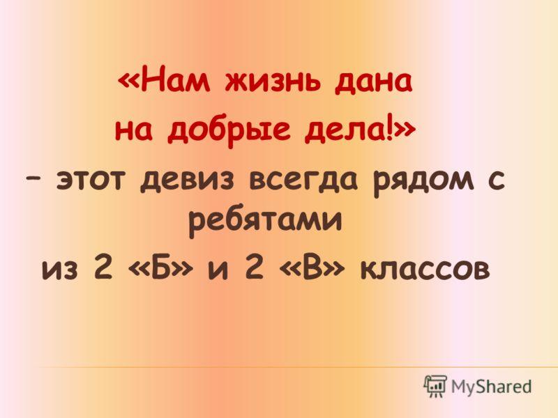 «Нам жизнь дана на добрые дела!» – этот девиз всегда рядом с ребятами из 2 «Б» и 2 «В» классов