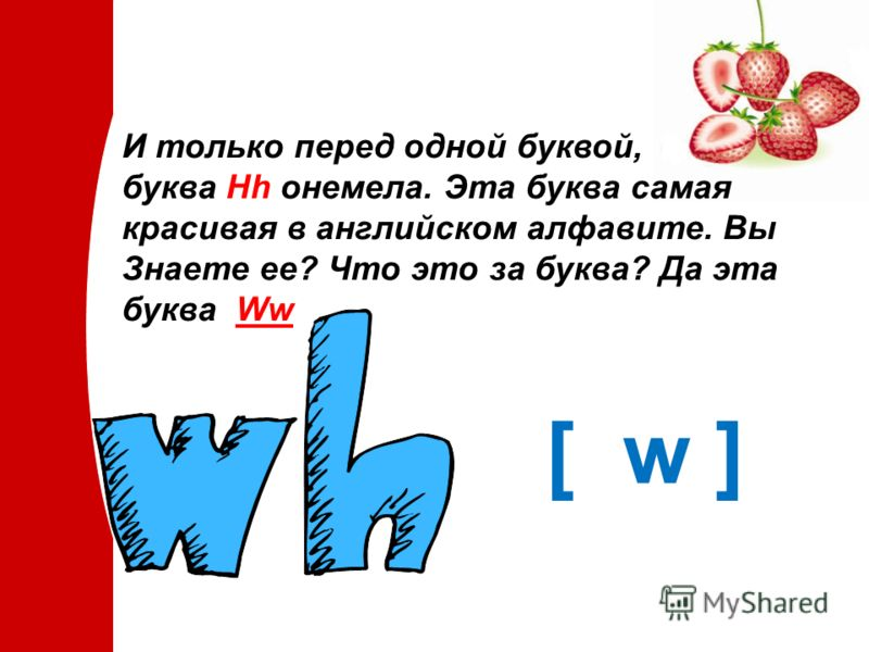 И только перед одной буквой, буква Hh онемела. Эта буква самая красивая в английском алфавите. Вы Знаете ее? Что это за буква? Да эта буква Ww [ w ]