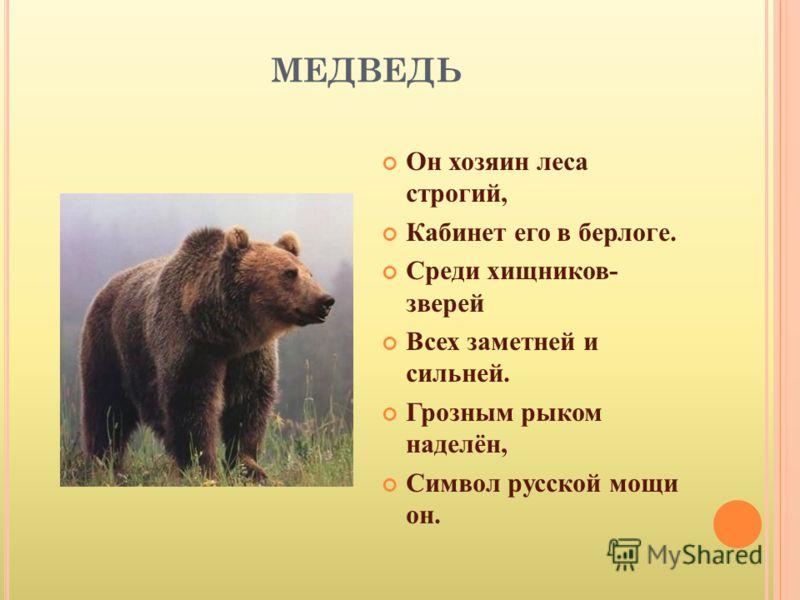 МЕДВЕДЬ Он хозяин леса строгий, Кабинет его в берлоге. Среди хищников- зверей Всех заметней и сильней. Грозным рыком наделён, Символ русской мощи он.