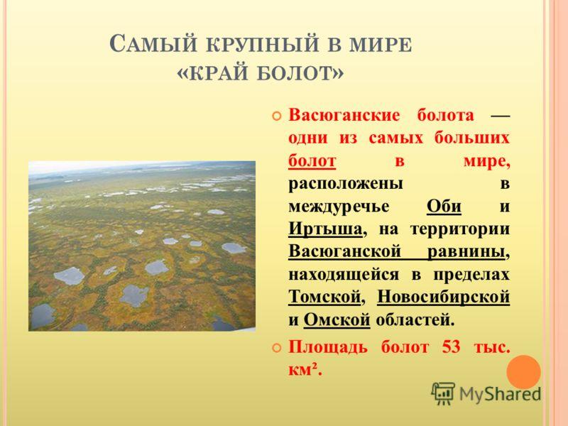 С АМЫЙ КРУПНЫЙ В МИРЕ « КРАЙ БОЛОТ » Васюганские болота одни из самых больших болот в мире, расположены в междуречье Оби и Иртыша, на территории Васюганской равнины, находящейся в пределах Томской, Новосибирской и Омской областей. Площадь болот 53 ты