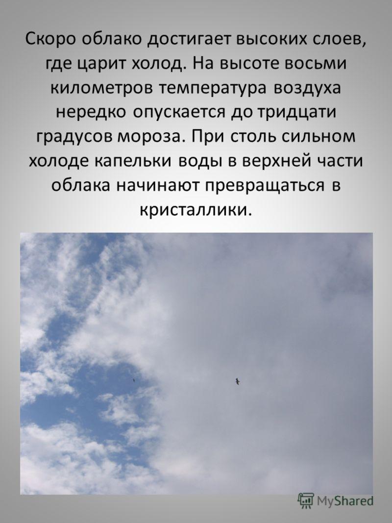 Скоро облако достигает высоких слоев, где царит холод. На высоте восьми километров температура воздуха нередко опускается до тридцати градусов мороза. При столь сильном холоде капельки воды в верхней части облака начинают превращаться в кристаллики.