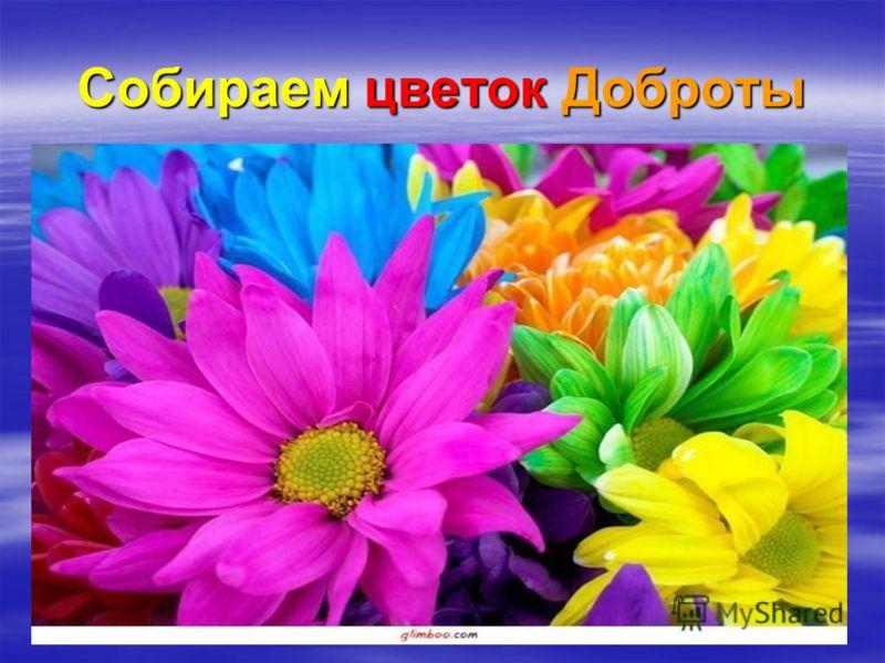Собираем цветок Доброты