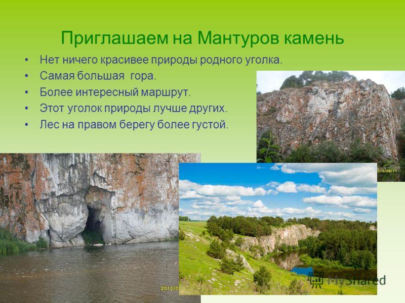 Приглашаем на Мантуров камень Нет ничего красивее природы родного уголка. Самая большая гора. Более интересный маршрут. Этот уголок природы лучше других. Лес на правом берегу более густой.