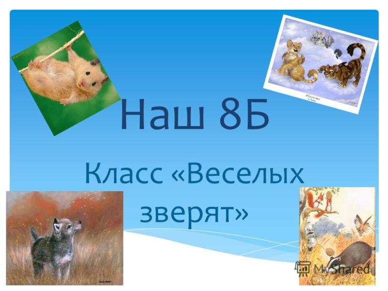 Наш 8Б Класс «Веселых зверят»