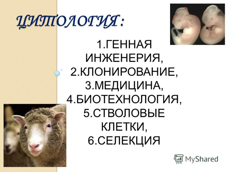 ЦИТОЛОГИЯ : 1.ГЕННАЯ ИНЖЕНЕРИЯ, 2.КЛОНИРОВАНИЕ, 3.МЕДИЦИНА, 4.БИОТЕХНОЛОГИЯ, 5.СТВОЛОВЫЕ КЛЕТКИ, 6.СЕЛЕКЦИЯ