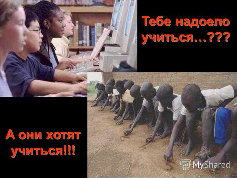 Тебе надоело учиться…??? A они хотят учиться!!!