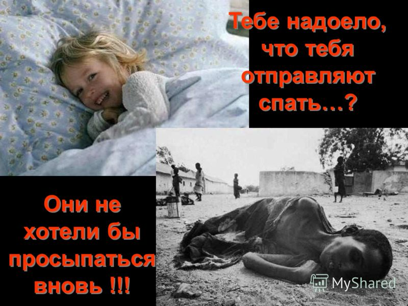 Тебе надоело, что тебя отправляют спать…? Они не хотели бы просыпаться вновь !!!