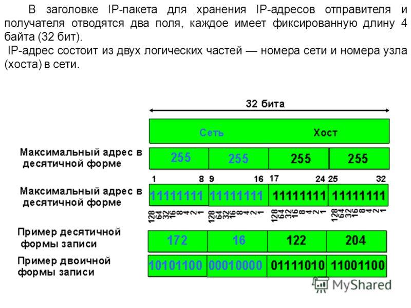 В заголовке IP-пакета для хранения IP-адресов отправителя и получателя отводятся два поля, каждое имеет фиксированную длину 4 байта (32 бит). IP-адрес состоит из двух логических частей номера сети и номера узла (хоста) в сети.