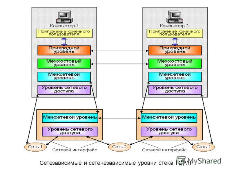 Сетезависимые и сетенезависимые уровни стека TCP/IP