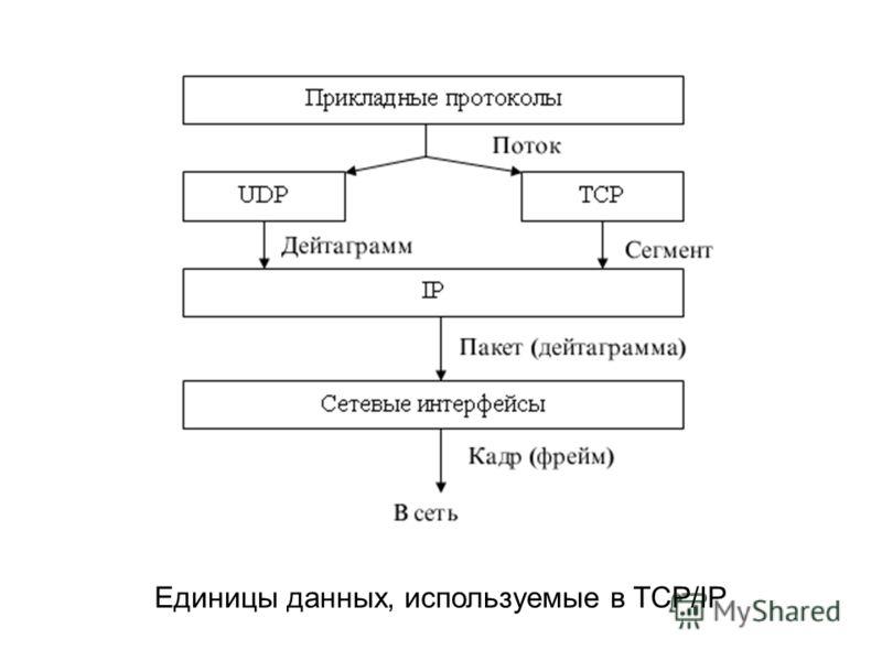 Единицы данных, используемые в TCP/IP