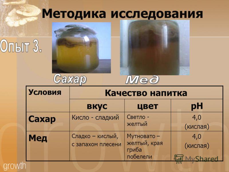Методика исследования Условия Качество напитка вкусцветрН Сахар Кисло - сладкий Светло - желтый 4,0 (кислая) Мед Сладко – кислый, с запахом плесени Мутновато – желтый, края гриба побелели 4,0 (кислая)