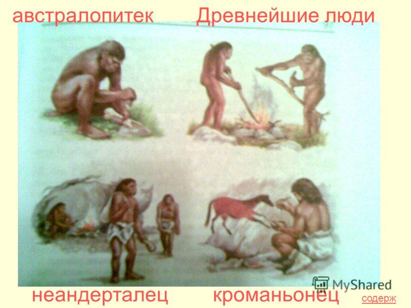 австралопитекДревнейшие люди неандерталецкроманьонец содерж