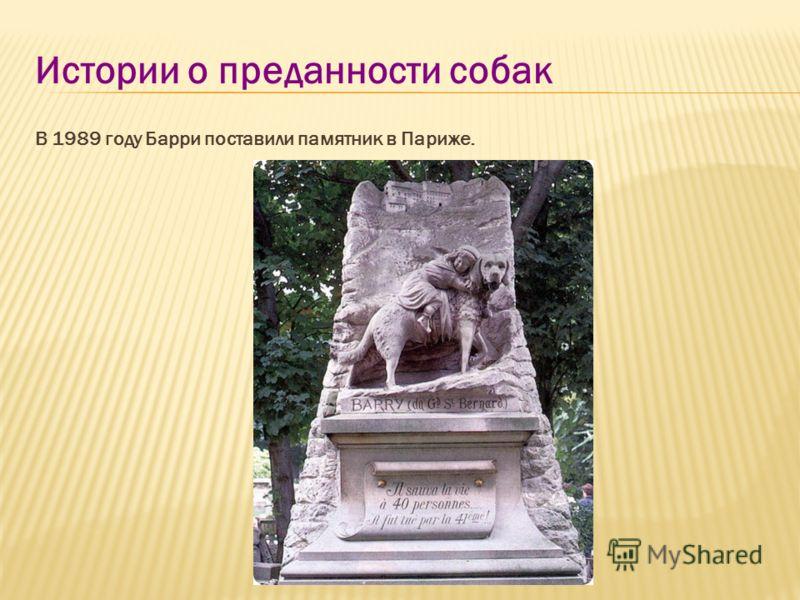 Истории о преданности собак В 1989 году Барри поставили памятник в Париже.
