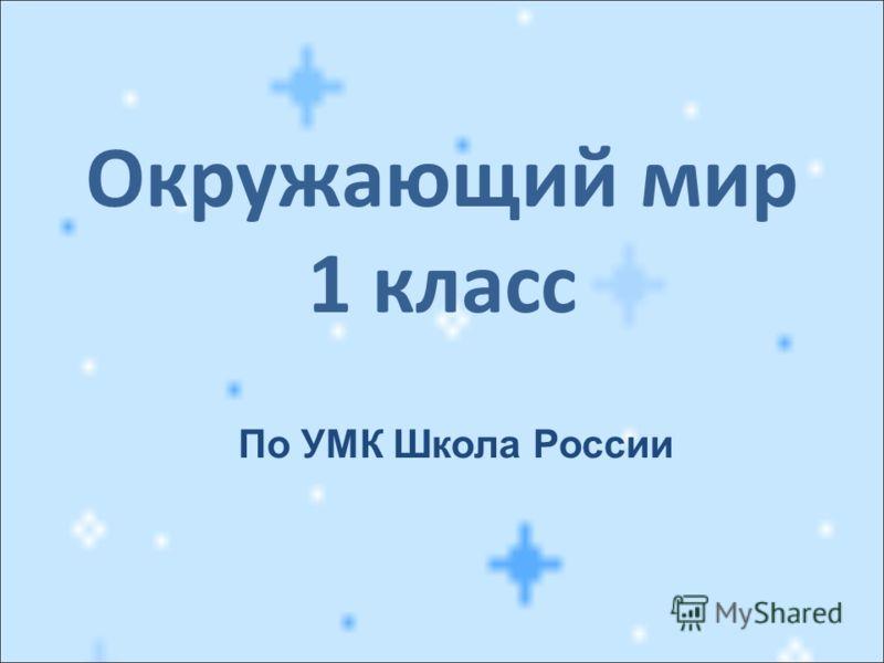 Окружающий мир 1 класс По УМК Школа России