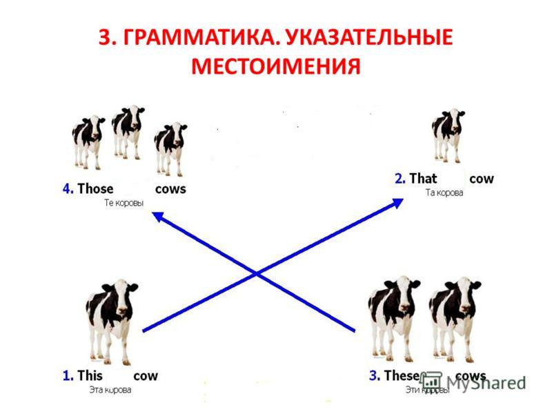 3. ГРАММАТИКА. УКАЗАТЕЛЬНЫЕ МЕСТОИМЕНИЯ