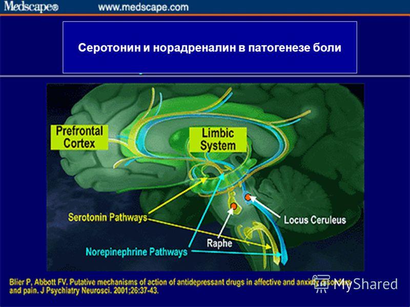 Серотонин и норадреналин в патогенезе боли