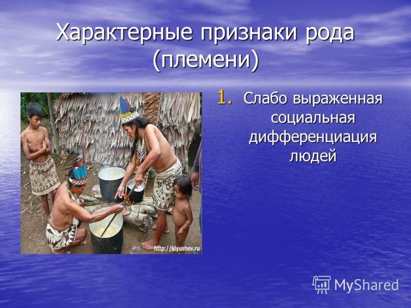 Характерные признаки рода (племени) 1. Слабо выраженная социальная дифференциация людей