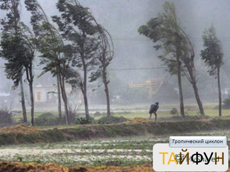 ТОРНАДО Сильный вихрь над сушей диаметром в несколько десятков метров, возникающий под грозовым облаком.