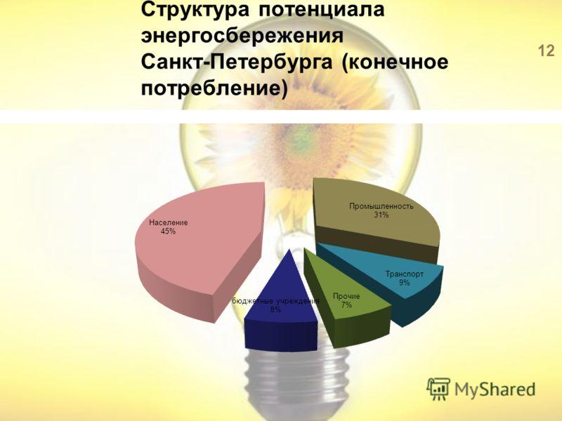 Структура потенциала энергосбережения Санкт-Петербурга (конечное потребление) 12