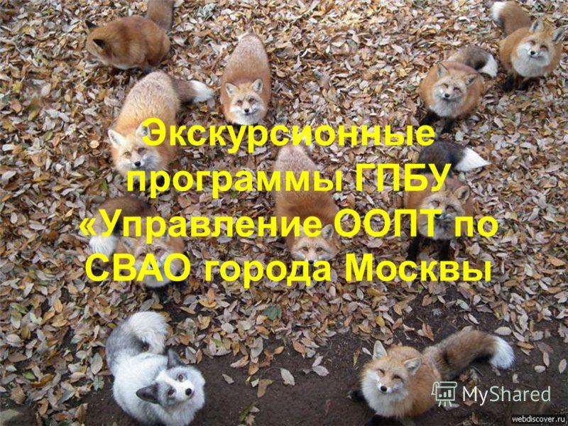 Экскурсионные программы ГПБУ «Управление ООПТ по СВАО города Москвы