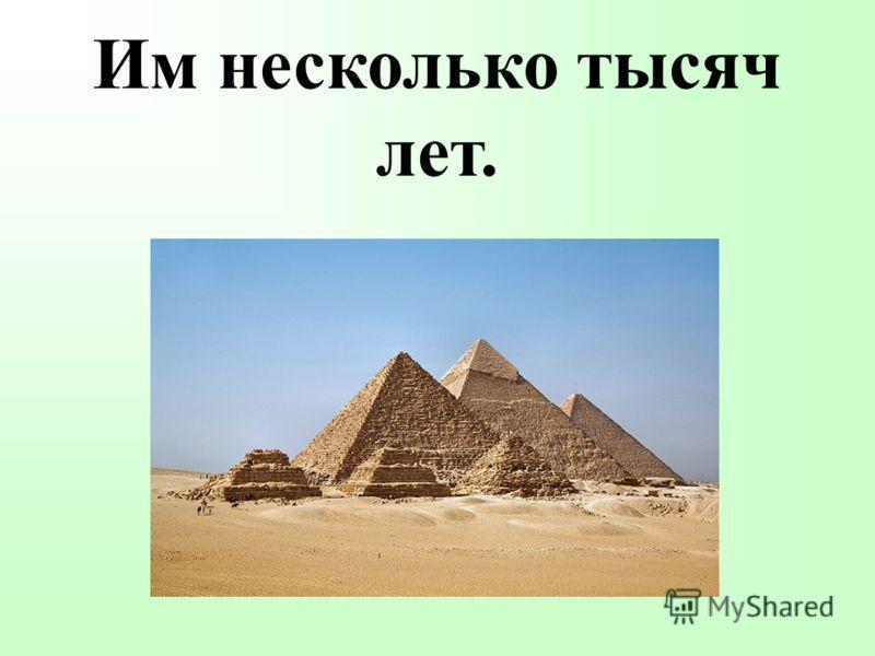 Им несколько тысяч лет.