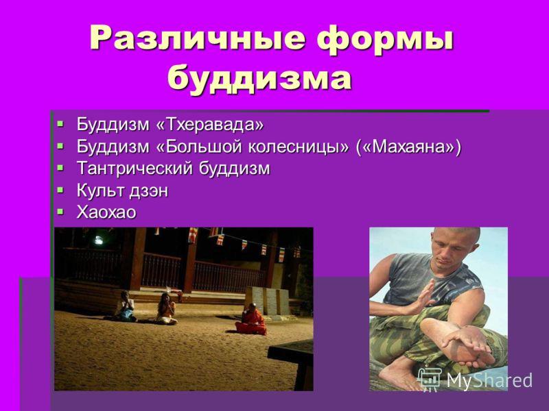Презентация на тему Буддизм Подготовил Плотников Данила  5 Различные