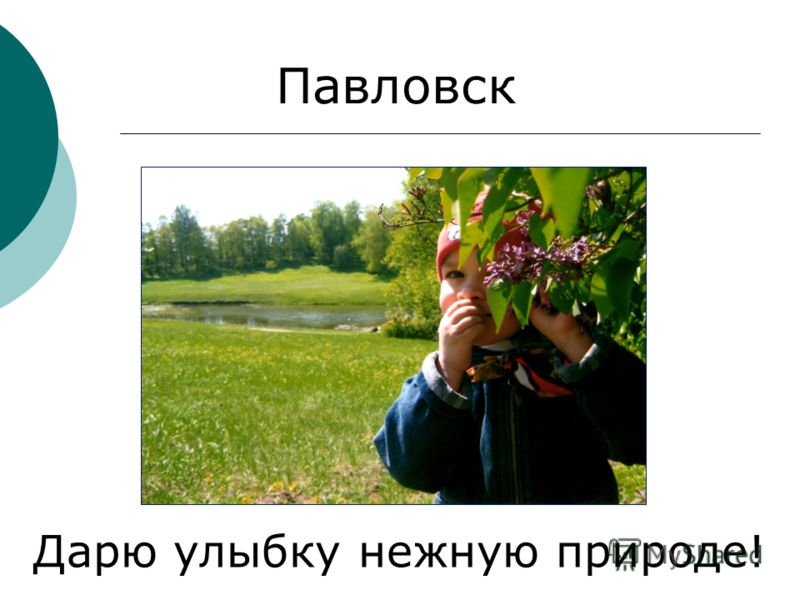 Павловск Дарю улыбку нежную природе!