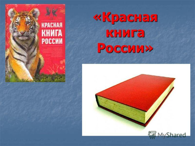 Скачать презентацию на тему красная книга