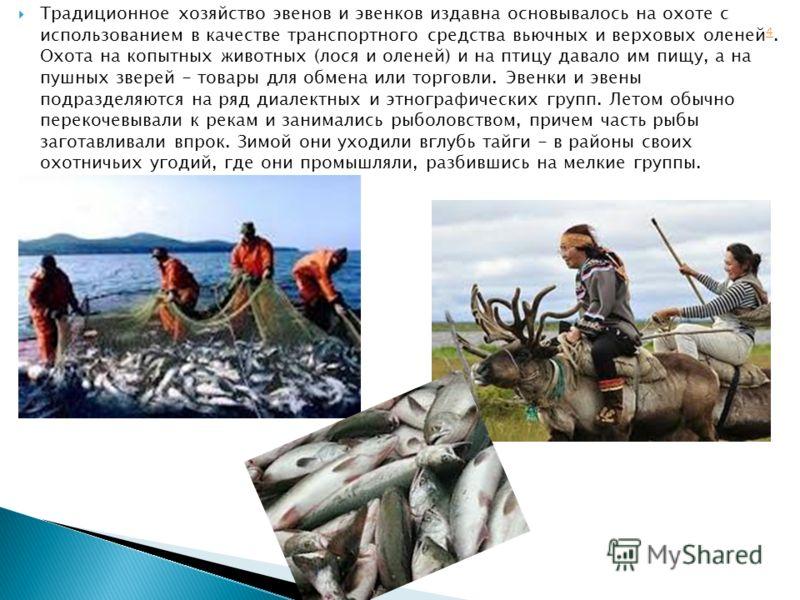 Традиционное хозяйство эвенов и эвенков издавна основывалось на охоте с использованием в качестве транспортного средства вьючных и верховых оленей 4. Охота на копытных животных (лося и оленей) и на птицу давало им пищу, а на пушных зверей - товары дл